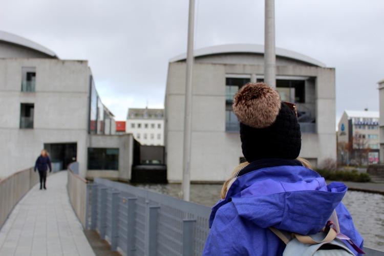 city-hall-iceland